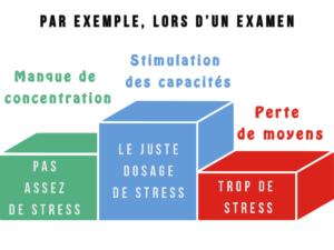 Trop de stress, pas assez ou le juste dosage de stress